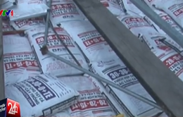 Bạc Liêu bắt 91 tấn phân bón không rõ nguồn gốc