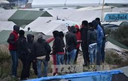 Pháp đưa hơn 2.000 người tị nạn ra khỏi trại Calais