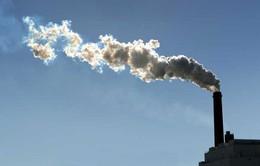 Việt Nam hướng tới phát triển kinh tế carbon thấp