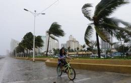Bão Nida đổ bộ đảo Luzon, Philippines, 1 người thiệt mạng