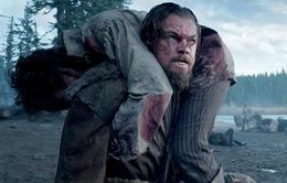 """""""The Revenant"""" dự báo thắng lớn tại Oscar 2016"""