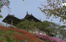 Tham quan phim trường lớn nhất Hàn Quốc