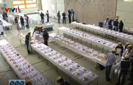 Nhộn nhịp cuộc thi của các nhà chế biến phô mai tại Thụy Sỹ