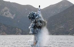 Hàn Quốc và Mỹ thảo luận trả đũa vụ phóng tên lửa của Triều Tiên