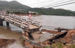Sập cầu Vĩnh Hy gây ách tắc giao thông tại Ninh Thuận