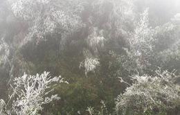 Miền Bắc đón không khí lạnh cực mạnh, có thể xảy ra băng giá mưa tuyết