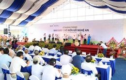Khánh thành Nhà máy chế biến gỗ lớn nhất Đông Nam Á tại Nghệ An