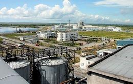 Hai dự án FDI quy mô lớn nhắm vào Hải Phòng