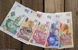 Quà lưu niệm độc đáo từ… tiền giấy!