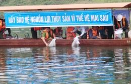 Thả gần 51.000 con cá giống tại hồ thủy điện Cốc Ly