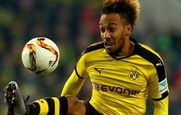 """""""Máy làm bàn"""" Aubameyang tỏ lòng trung với Dortmund"""