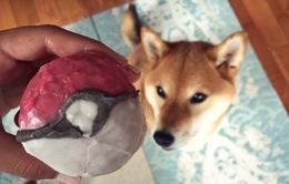 """Kiếm bộn bạc nhờ """"ăn theo"""" Pokemon Go"""