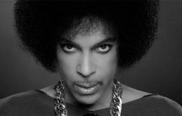 Huyền thoại âm nhạc Prince bất ngờ qua đời ở tuổi 57