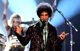 Prince qua đời: Không phải tự sát!