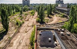 Thị trấn Pripyat hoang tàn sau 30 năm thảm họa hạt nhân Chernobyl