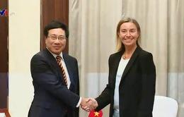 Phó Thủ tướng Phạm Bình Minh tiếp lãnh đạo và Bộ trưởng các nước EU