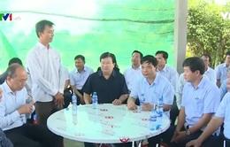 Đoàn công tác của Chính phủ làm việc tại Bạc Liêu