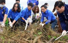 Phó Thủ tướng Vũ Đức Đam cùng sinh viên nhặt rác, trồng cây