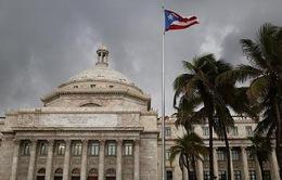 Puerto Rico tuyên bố hoãn thanh toán nợ