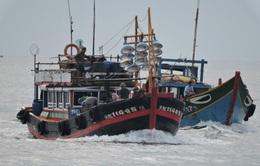 Vì sao ngư dân Việt Nam hay bị tấn công trên biển Đông?