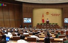 Điểm nhấn kỳ họp thứ hai, Quốc hội khóa XIV
