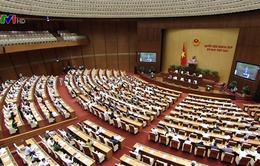 Quốc hội quyết định dừng Dự án điện hạt nhân Ninh Thuận