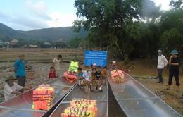 Cộng đồng người Việt tại Nga tặng thuyền người dân vùng lũ