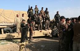 Quân đội Iraq khép chặt vòng vây tại Mosul