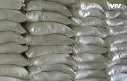 Quảng Bình hỗ trợ 1.500 tấn gạo cho người dân vùng lũ
