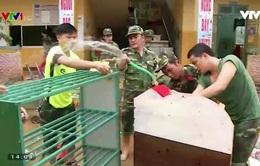 Ấm áp tình quân dân ở vùng lũ Quảng Ngãi