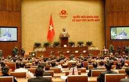 Hôm nay (2/4), Quốc hội bầu Chủ tịch nước