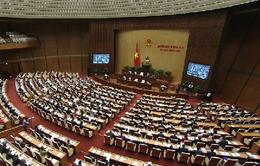 Hôm nay (2/11), Quốc hội thảo luận về kinh tế - xã hội