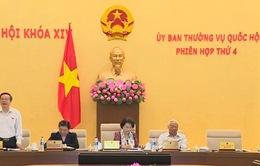 Chính phủ sẽ trình Quốc hội Nghị quyết việc cấp thị thực điện tử