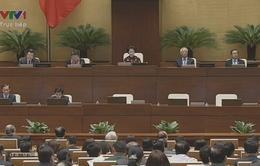Đại biểu Quốc hội tiếp tục thảo luận vấn đề tái cơ cấu nông nghiệp