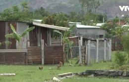 Đà Nẵng: Lợi dụng quy hoạch treo, nhiều người xây nhà chờ đền bù