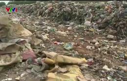 TT-Huế: Người dân khốn khổ vì bãi rác tạm