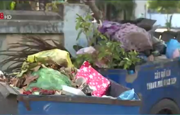 Thừa Thiên Huế tăng cường công tác xử lý chất thải rắn