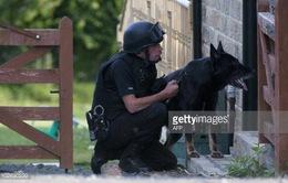 Cảnh khuyển - người bạn chiến đấu của lực lượng đặc nhiệm RAID tại Euro 2016