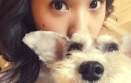 Chụp ảnh với thú cưng, Dương Thừa Lâm khiến fan hâm mộ ghen tỵ