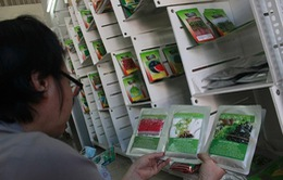 """Người tiêu dùng """"loạn"""" với hạt giống trồng rau mầm"""