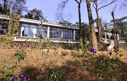 Hà Nội: Chờ chỉ đạo xử lý vụ xây resort tại Vườn Quốc gia Ba Vì