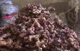 Sử dụng riềng xay chứa hóa chất Natri Hydrosunfit có thể tử vong