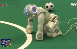 Giải bóng đá dành cho robot tại thành phố Leipzig (Đức)