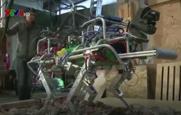Robot giúp khắc phục hậu quả động đất