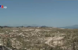 Nguy cơ xóa sổ rừng phòng hộ ven biển do các dự án du lịch