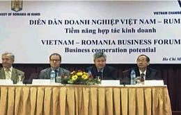 """""""Doanh nghiệp Việt Nam - Romania: Tiềm năng hợp tác kinh doanh"""""""