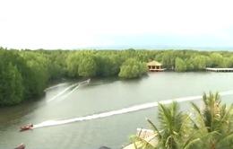 Rừng đước - Sản phẩm du lịch mới ở Campuchia