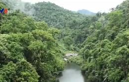Sẽ có 3 lực lượng chính thực hiện công tác bảo vệ rừng giáp ranh
