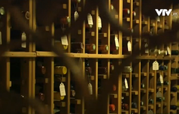Dùng lô cốt cũ để cất trữ rượu vang