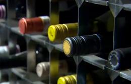 Cần làm gì khi người thân bị ngộ độc rượu?